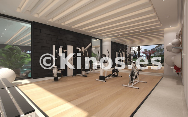 Large gym  1