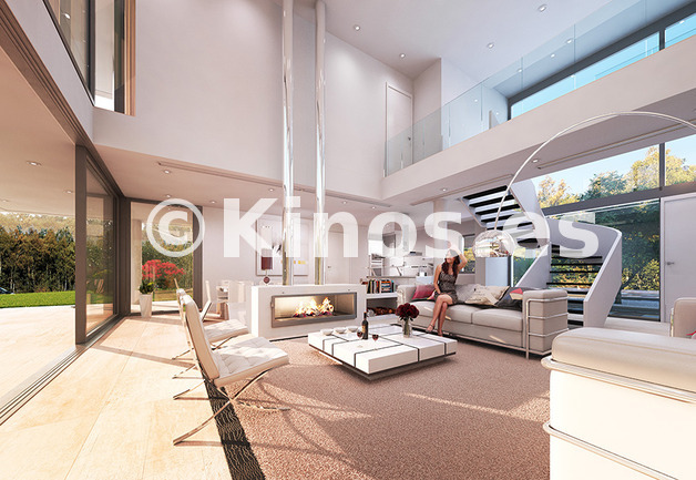 Large living interior