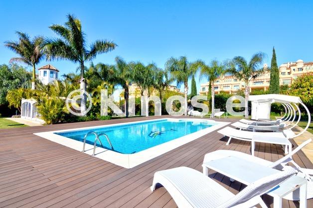 Large_flamingos_49_jardin_piscina_a