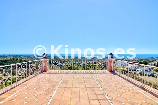Large_flamingos_49_torre_terraza